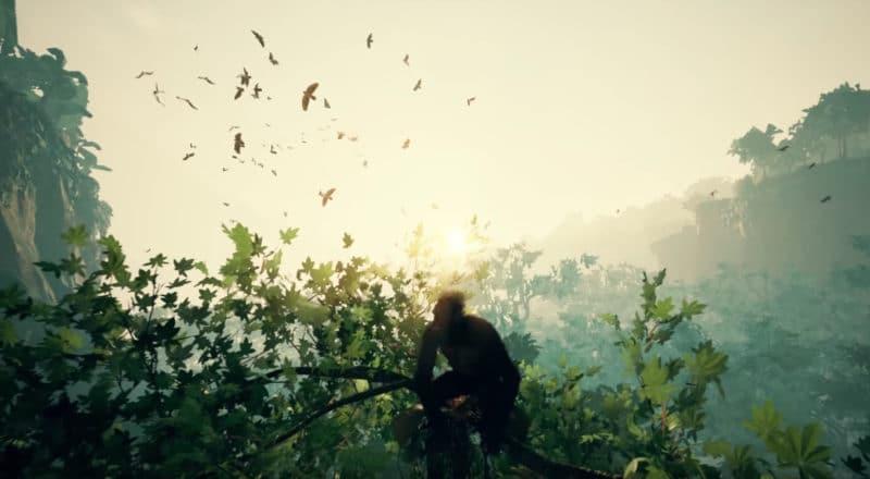 Ancestors: The Humankind Odyssey - Cime d'un arbre