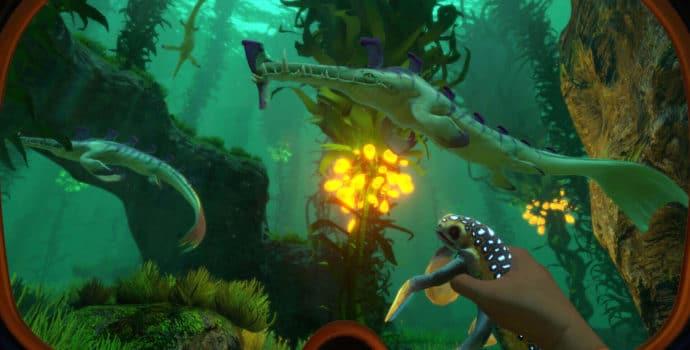 Surbnautica créatures marines