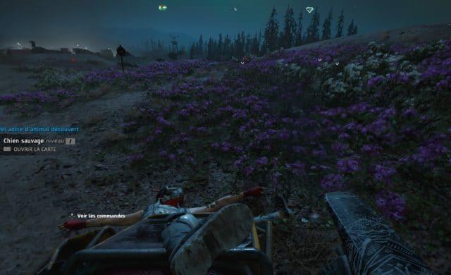 Far Cry: New Dawn - des bugs