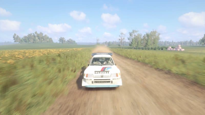 Test DiRT Rally 2.0 - 205 T16