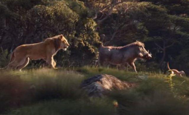 le roi lion Simba Pumbaa et Timon de retour en live action
