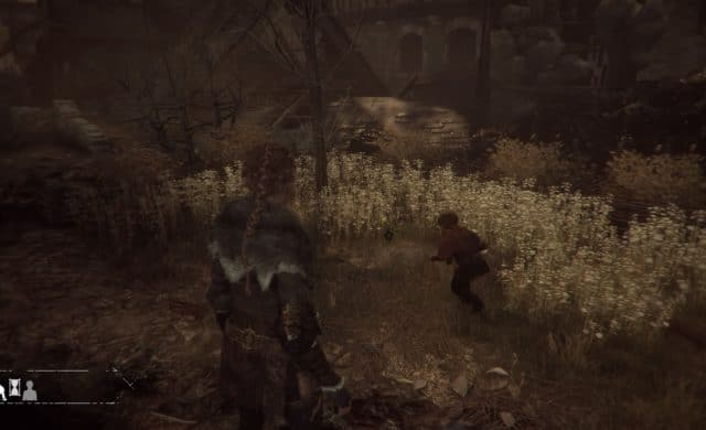 A Plague Tale: Innocence Hellébor noir