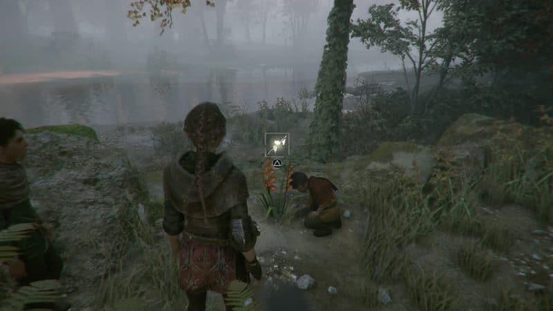A Plague Tale: Innocence glaieul