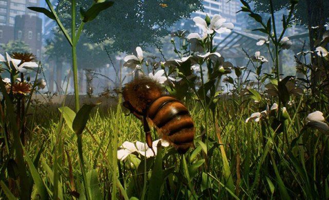 Bee simulator dans herbe