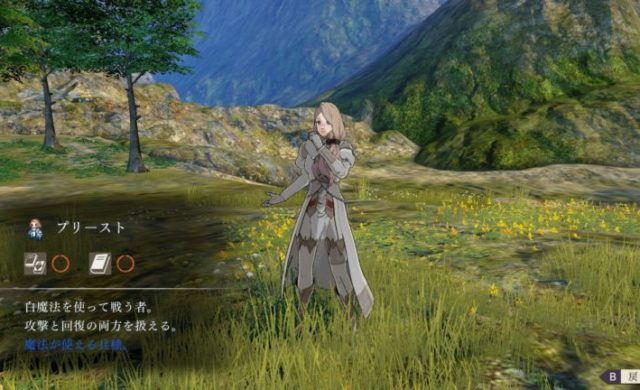 classe-priestess-fire-emblem-switch