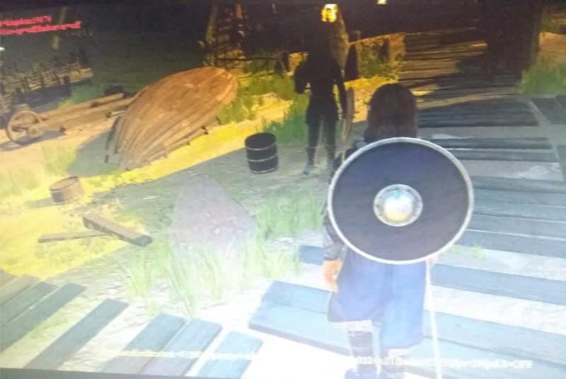 Assassin's Creed Ragnarok - En marche