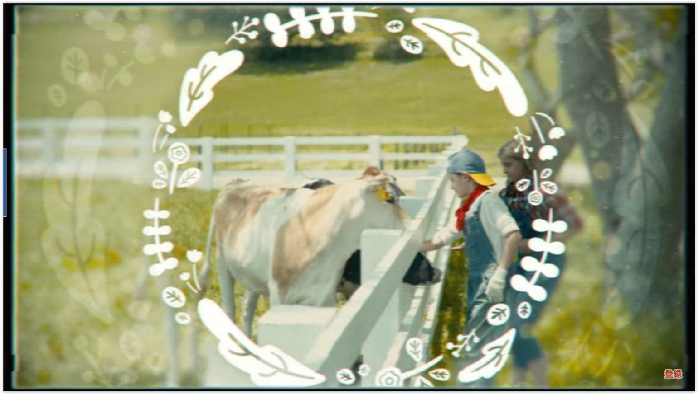 Story of Seasons: Reunion in Mineral Town - La ferme