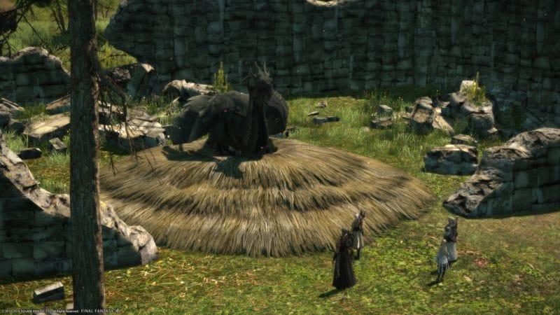 Final Fantasy XIV: Shadowbringers - amaro