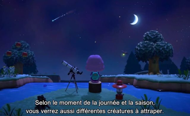 animal crossing: New Horizons - nuit