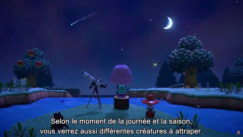 animal crossing: New Horizons - nuit