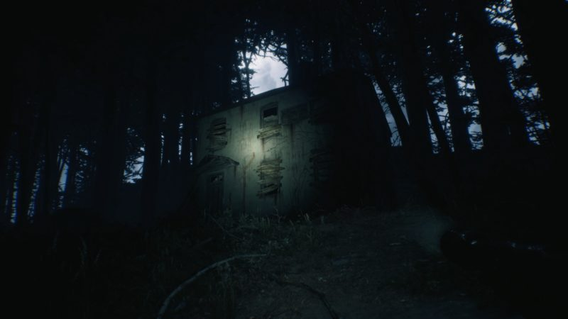Test Blair Witch house witch