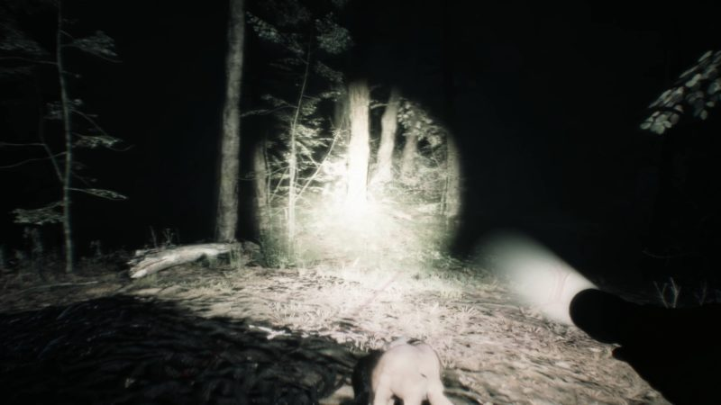 Test Blair Witch fight
