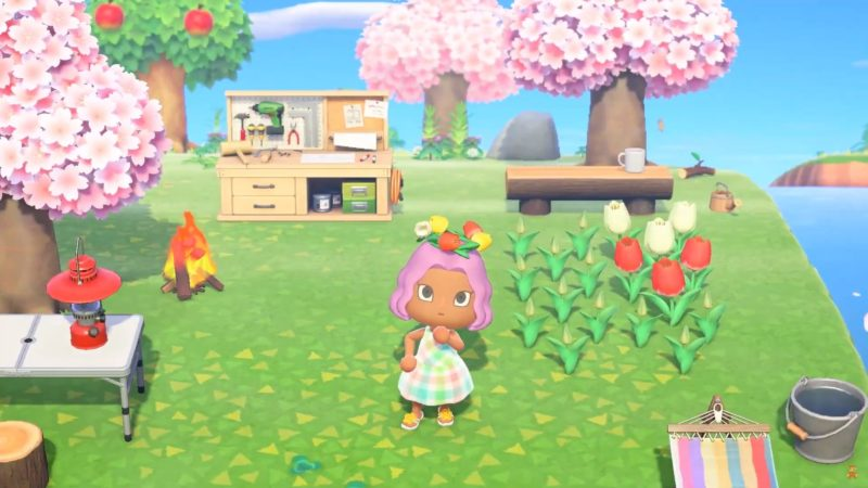 animal crossing: New Horizons - camping