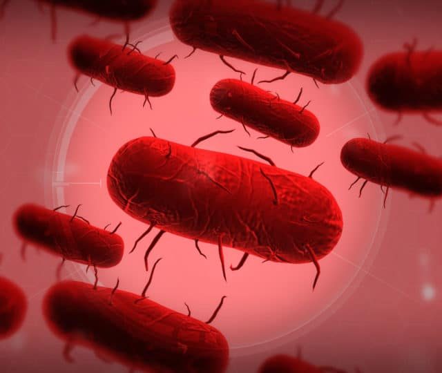 Plague Inc. Virus