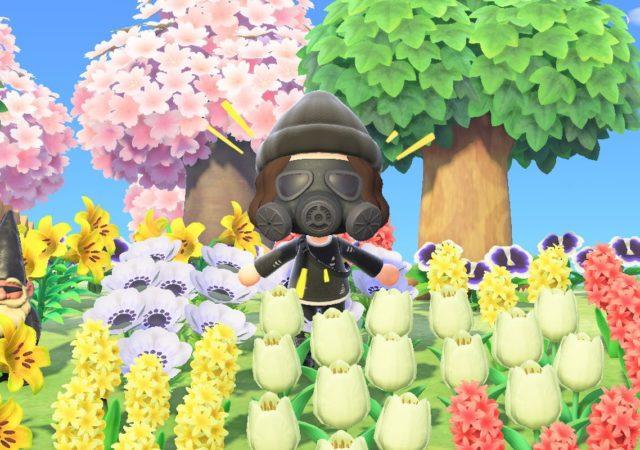 Animal Crossing: New Horizons - Censure