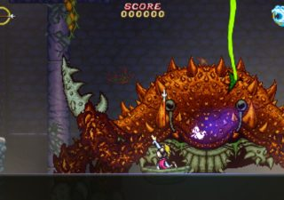 2 games 1 switch Battle Princess Madelyn