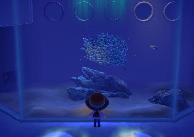 animal crossing : new horizon - poissons
