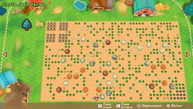 Story of Seasons: Friends of Mineral Town - Un taudis