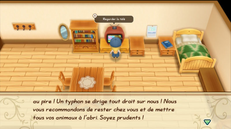 Story of Seasons: Friends of Mineral Town - Aléas