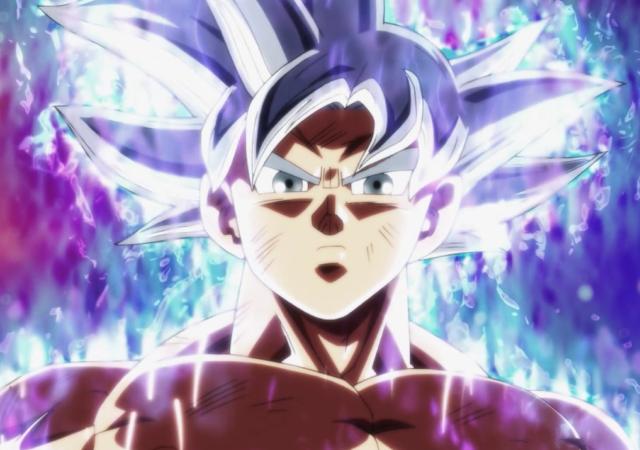 Son Goku: Combat Furieux