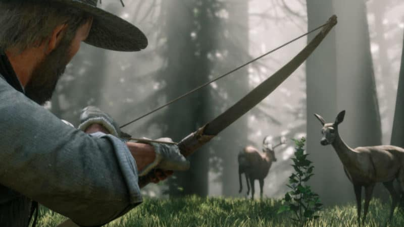 Red Dead Redemption 2 chasse