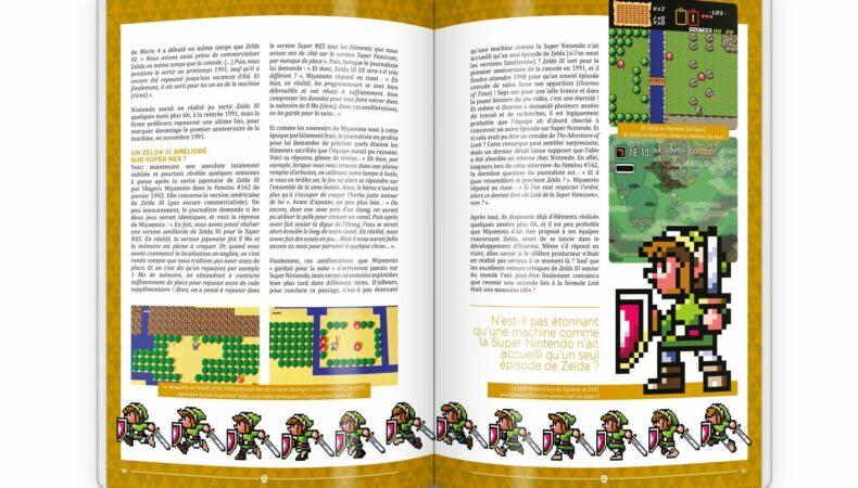 Génération Zelda pages