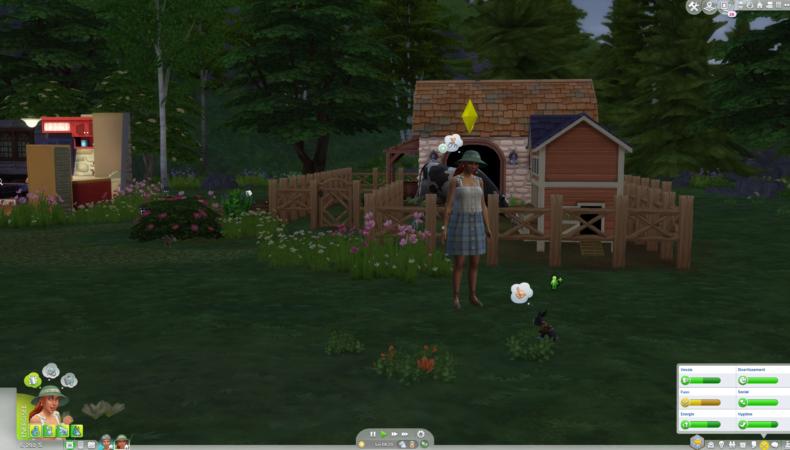 Les Sims 4 Vie à la campagne lapin