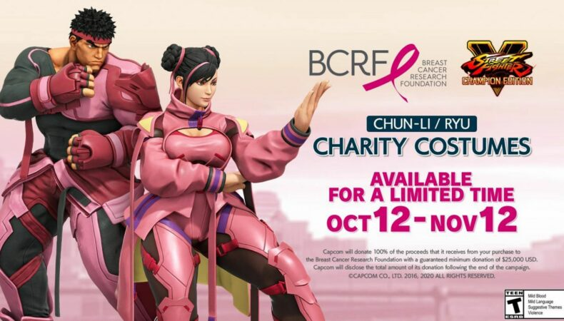 Street Fighter V costume charité